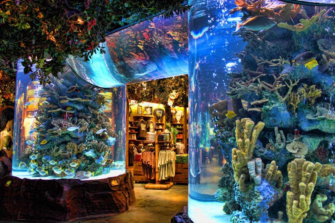 1-Rainforest-Cafe-Aquarium