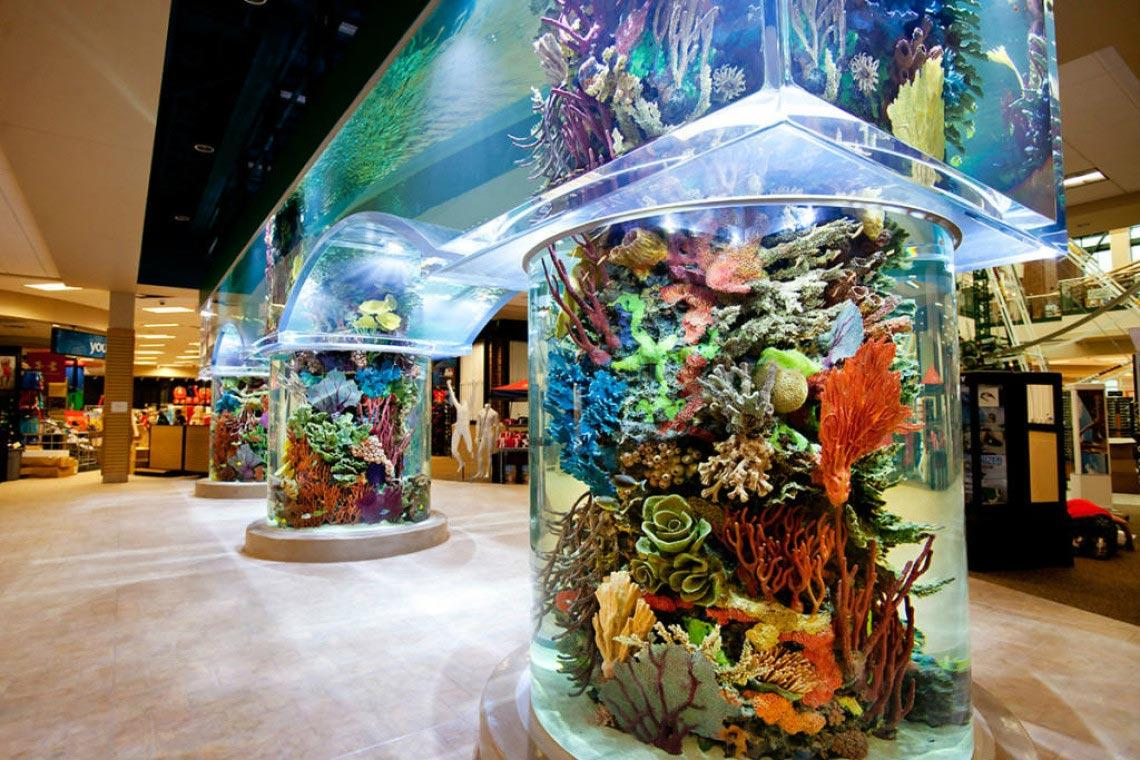 1-Scheels-Sporting-Goods-Aquarium