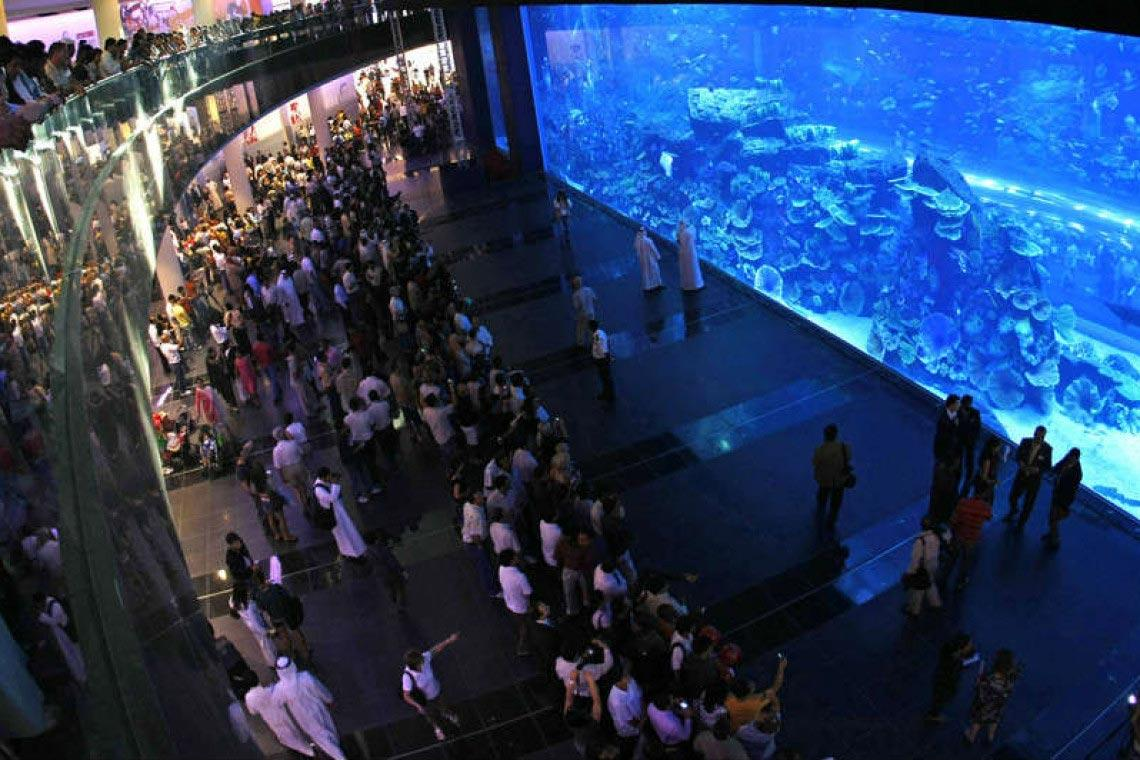 3-Dubai-Mall-Aquarium-Design