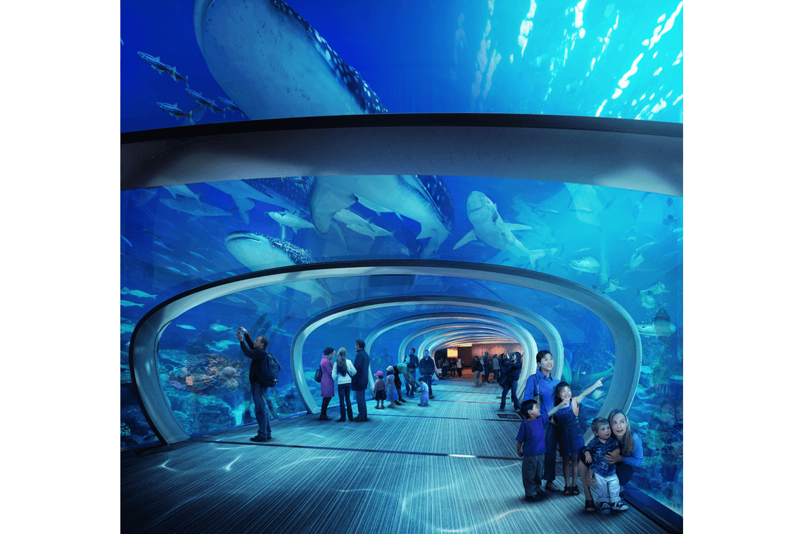 3-The-North-City-Whale-Shark-Aquarium