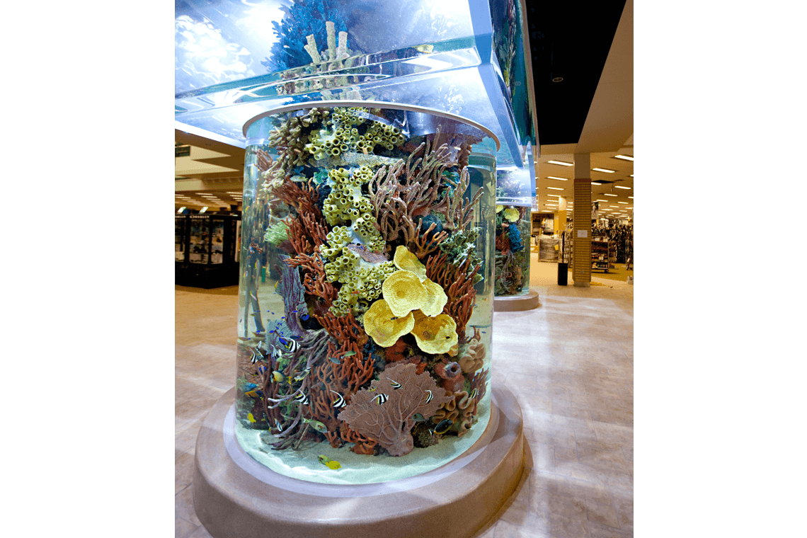 5-Scheels-Sporting-Goods-Aquarium