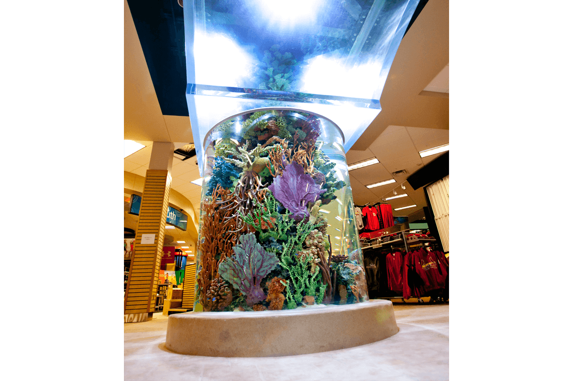 7-Scheels-Sporting-Goods-Aquarium