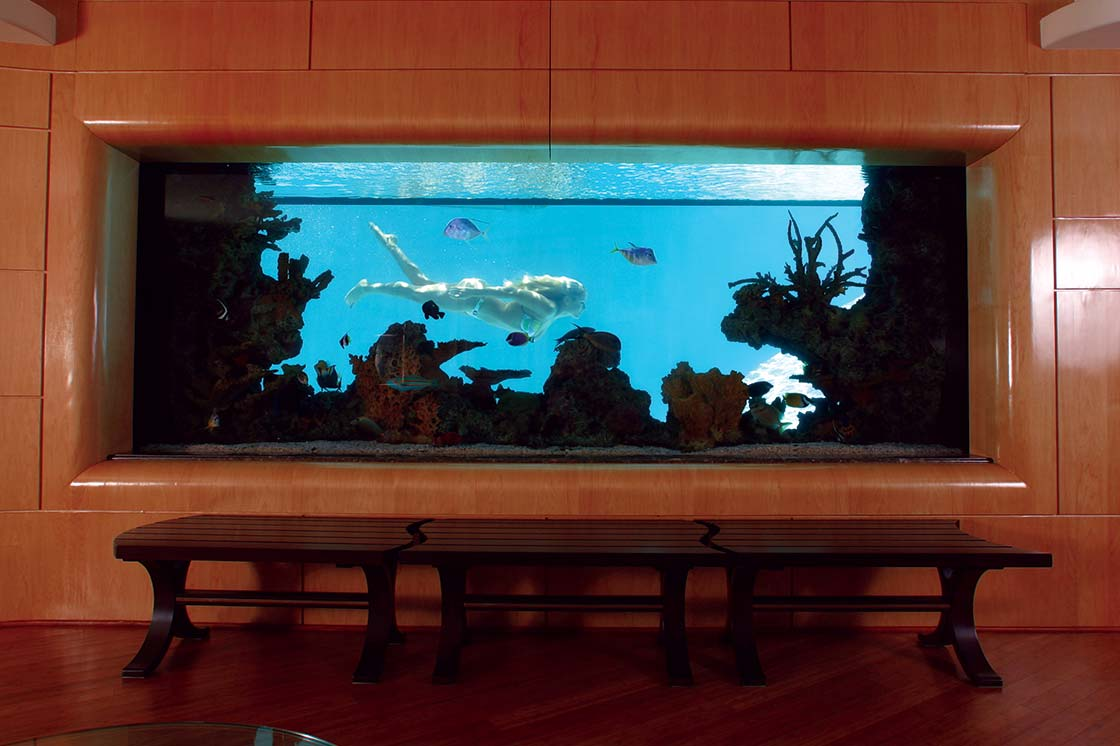 Custom-Aquarium-for-Private-Resendence-4